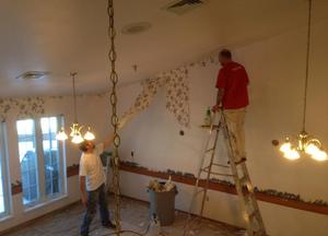 T L Home Finishing Wallpaper Removal